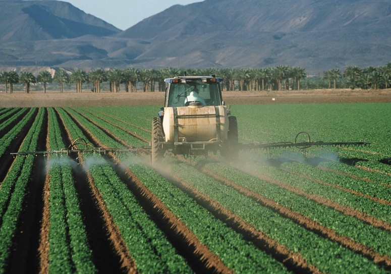 Regulatory agencies rubber-stamp more GMOs despite pesticide contamination in our food and everyday products