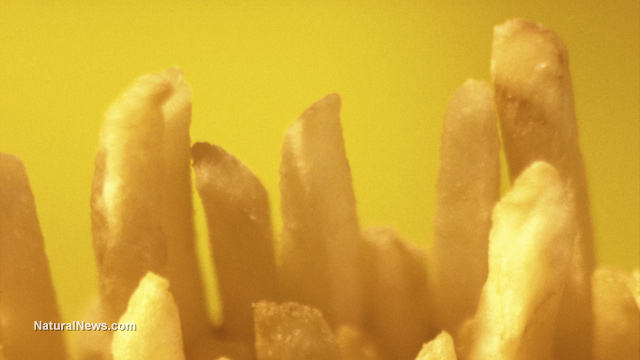 Image: McDonald's french fries found to contain ingredients used in tank sealants, biodiesel
