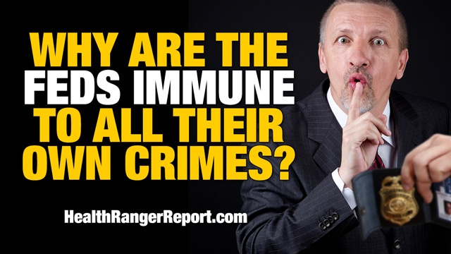 Why are the feds immune to all their own crimes?