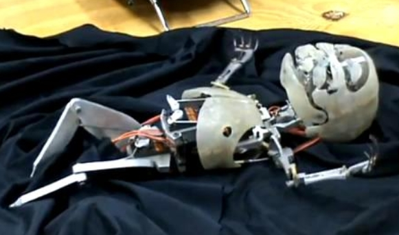 Image: Introducing the Robot Baby Project: Amsterdam researchers have decided to make robots that can mate and reproduce