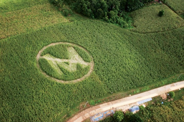 Monsanto is an evil company that doesn't care about you or the environment