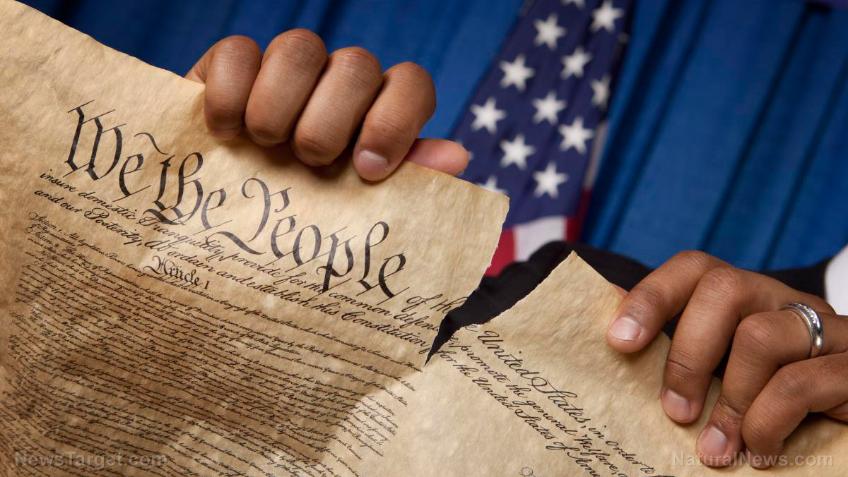 "ACLU, SPLC must be prosecuted for ""sabotaging a constitutional republic,"" warns author"