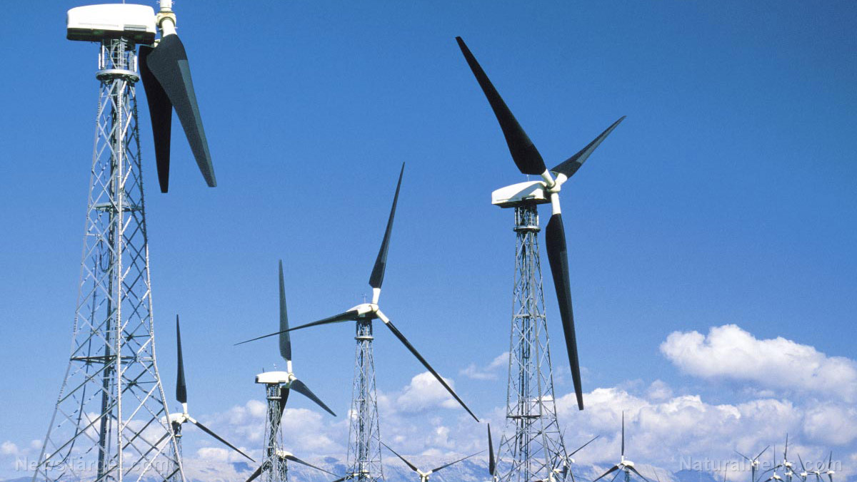 Green power dangers: Scientists review the downside of renewable energies