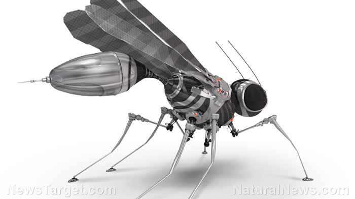 First wireless insect-size robot takes flight