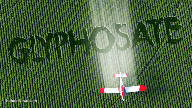 Major U.S. brands demand EPA take action to stop pre-harvest spraying of toxic glyphosate on food crops