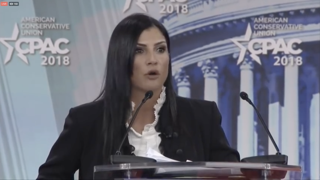 "CNN hosts a modern-day Salem Witch Trial: Angry Leftists shout ""burn her!"" at NRA spokeswoman Dana Loesch"