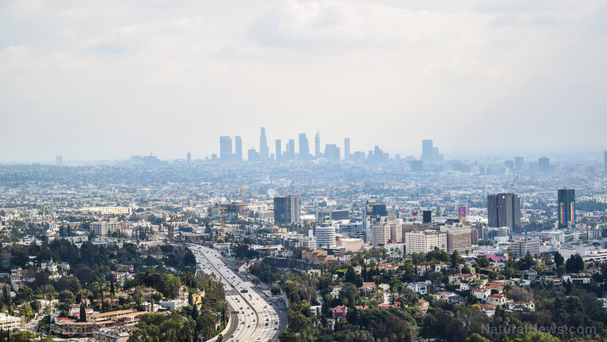 Doctor warns Los Angeles collapsing into Third World health status… the filth of progressivism has become undeniable