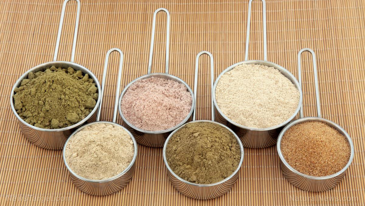 Prepper protein: Which powders should you stockpile?