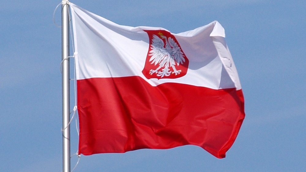 Poland defends itself against LGBT insanity while America surrenders its children to mentally ill perverts and pedophiles
