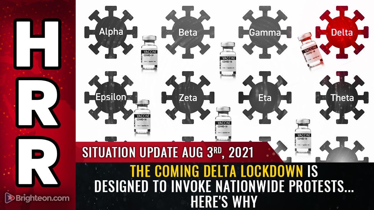 El próximo bloqueo de Delta está DISEÑADO para invocar protestas en todo el país para que puedan ser explotadas como telón de fondo para un evento de bandera falsa para culpar a los